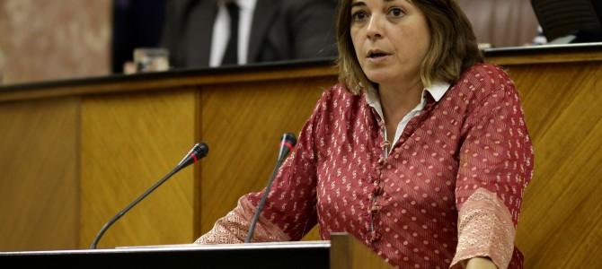 IU presenta una enmienda a la totalidad del Presupuesto de la Junta de Andalucía para 2016 y exige su devolución